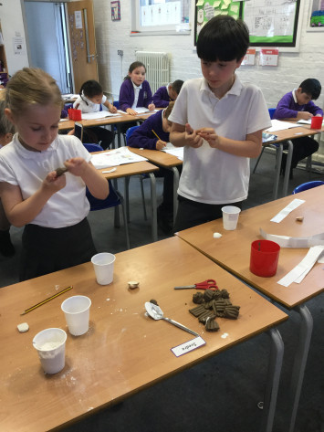 Investigating Fossils in 3R