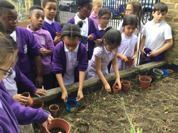 3L see if they are green fingered