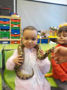 Nursery and the Animals