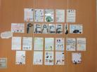 Class 3 Peace Display