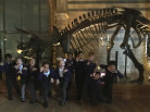Year 5 + 6 visit The Natural History Museum