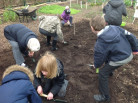 Year 3 visit Salopian Garden